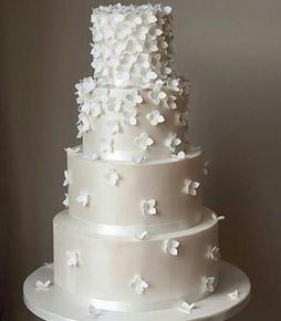 کیک عروس  AE